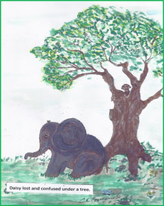 Daisy The Elephant sitting by a tree